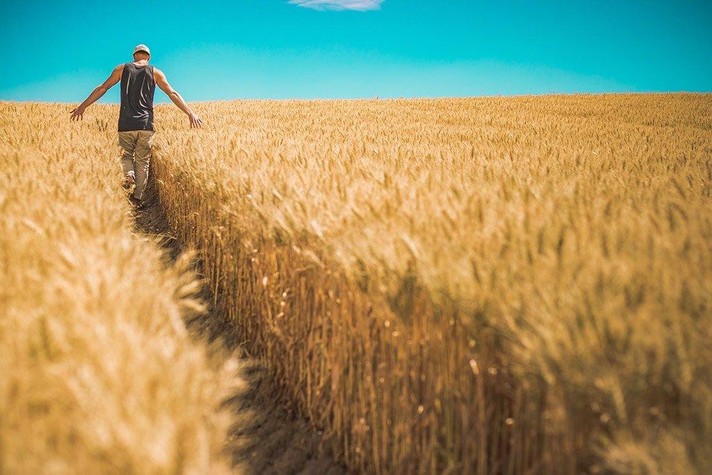 sembrar… cuando el cuerpo duele y la vida no da